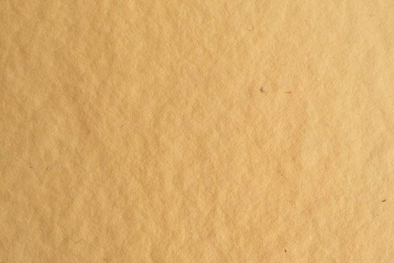 HMP00035 (Warm Yellow)