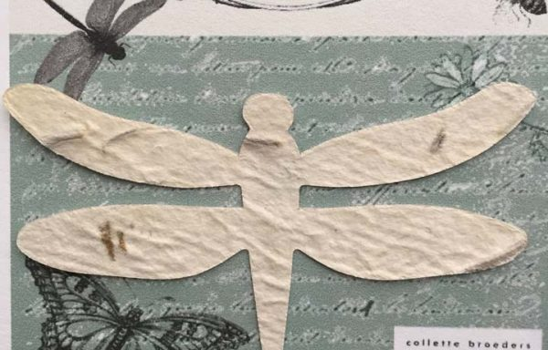 PBS1004 (Dragonfly Seed Paper Favour)