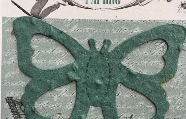 PBS1022 (Open Butterfly Diecut)